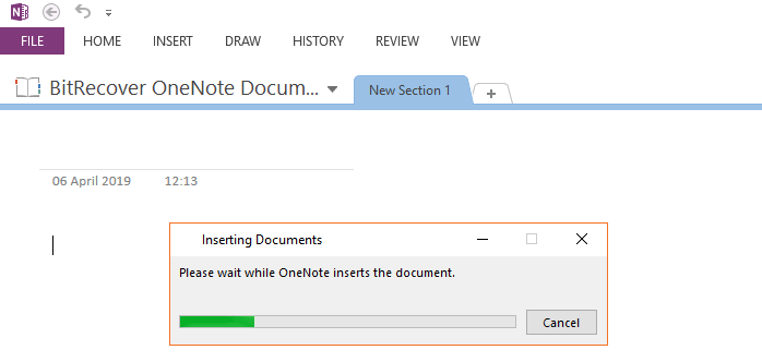 wait while OneNote inserts the document